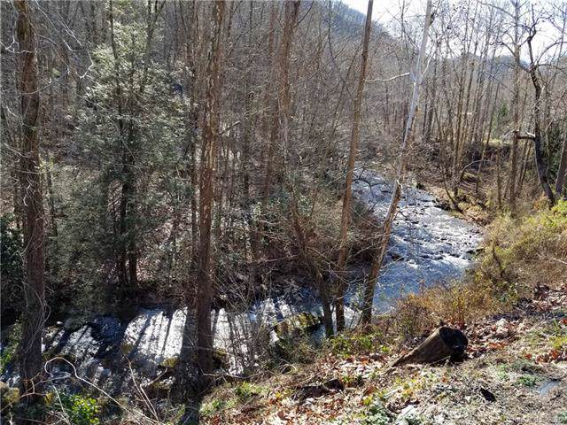 12 Acres OFF Rivercove Lane #3, Saluda, NC 28773 (#3586588) :: Stephen Cooley Real Estate Group