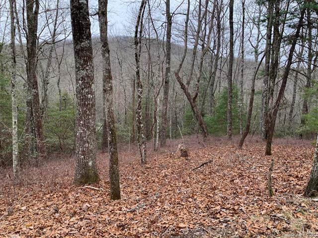 99 Pheasant Lane, Brevard, NC 28712 (#3586630) :: Stephen Cooley Real Estate Group