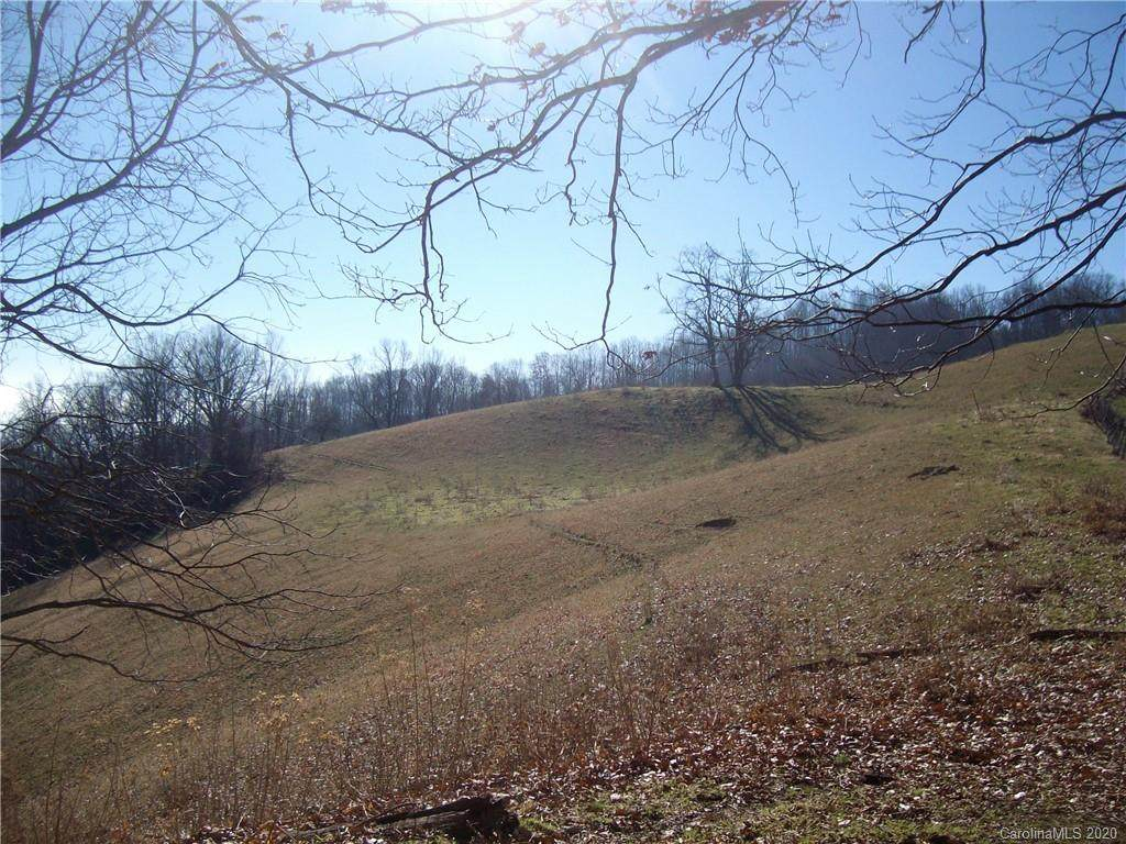 00 Flynn Branch Road, Marshall, NC 28753 (#3586763) :: Carlyle Properties
