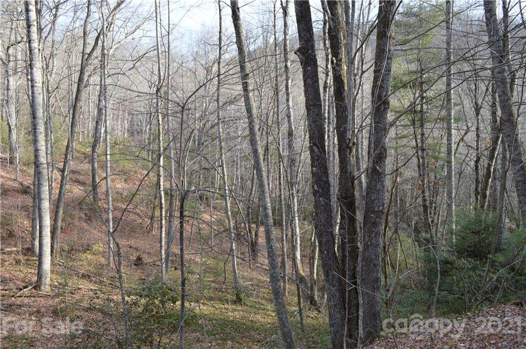 470 Rock Creek Road, Black Mountain, NC 28711 (#3586806) :: Roby Realty