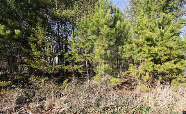 Lot 10 Riverstone Drive #10, Lincolnton, NC 28092 (#3587348) :: Caulder Realty and Land Co.