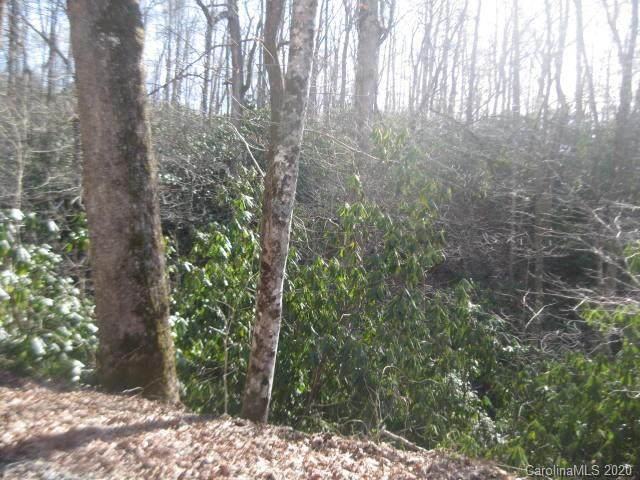 99999 Nc Hwy 9 Highway, Black Mountain, NC 28711 (#3589824) :: Rinehart Realty