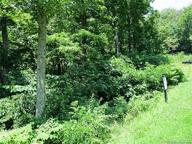 24 Starling Pass #4, Asheville, NC 28804 (#3591105) :: Mossy Oak Properties Land and Luxury