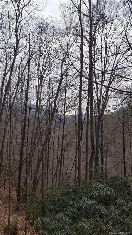 00 Chestnut Branch Road, Bakersville, NC 28705 (#3592402) :: Charlotte Home Experts