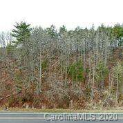 1075 Calvin Edney Road, Mars Hill, NC 28754 (#3593310) :: SearchCharlotte.com