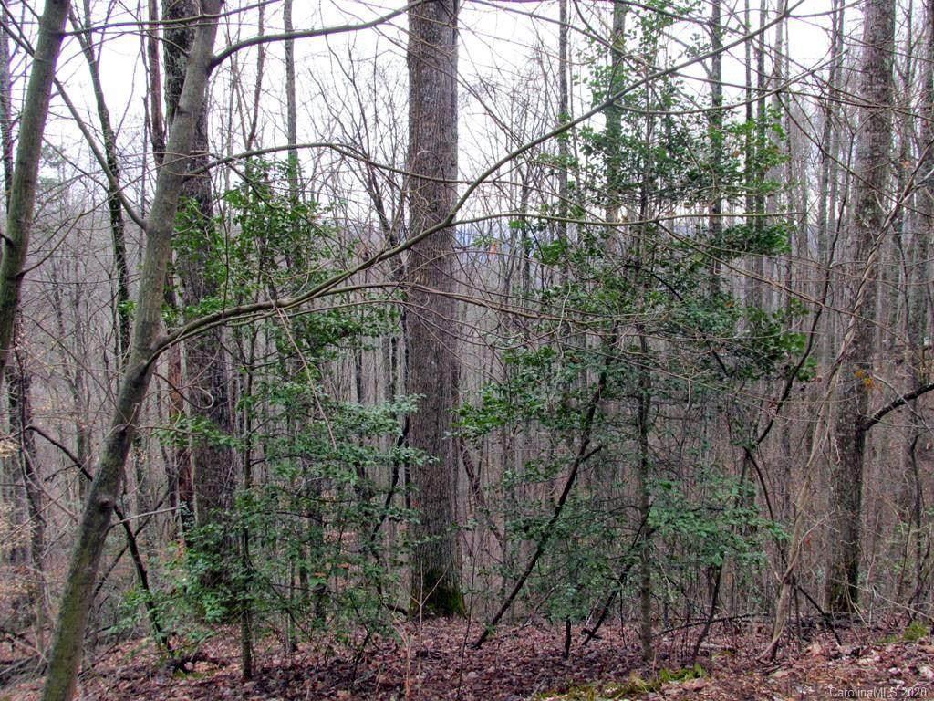 Tract 14 Gobbler Ridge - Photo 1