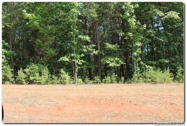 13731 Girl Scout Road, Charlotte, NC 28278 (#3595546) :: MartinGroup Properties