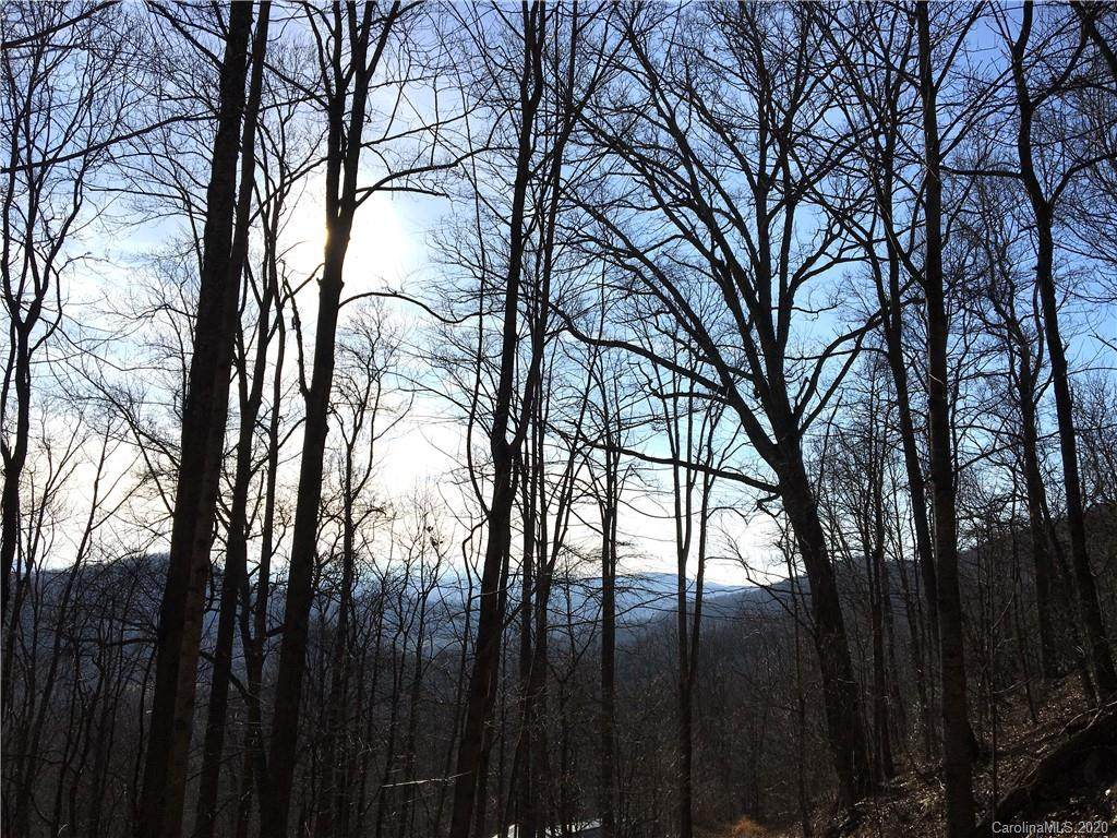 62 Elk Trail - Photo 1