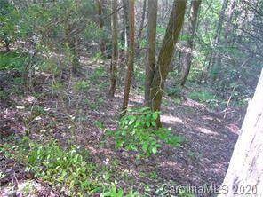 772 Rich Mountain Road, Flat Rock, NC 28731 (#3597800) :: Caulder Realty and Land Co.