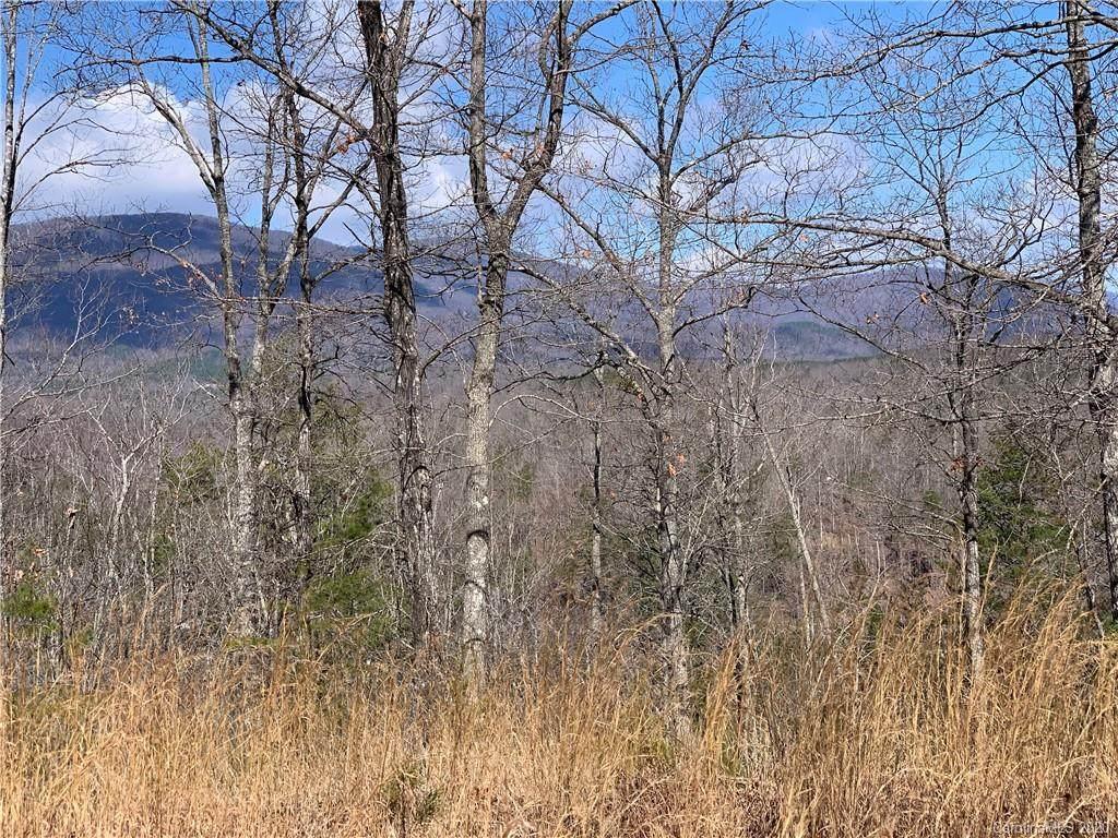 999 Lake Adger Parkway - Photo 1