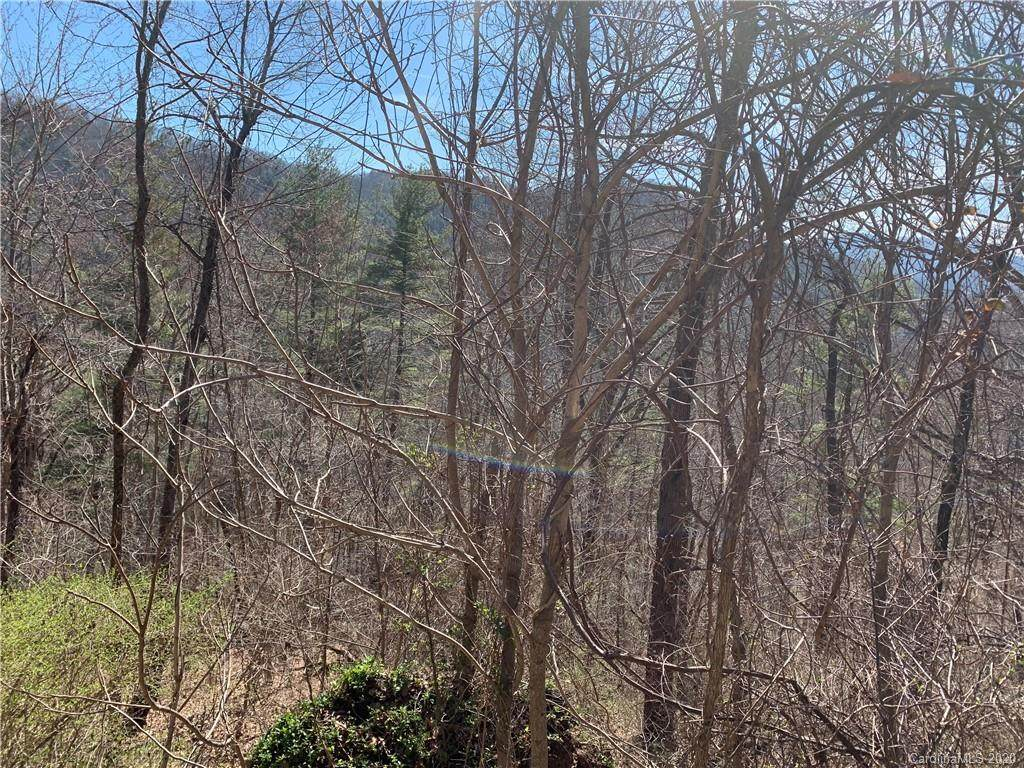 216 Vance Gap Road - Photo 1