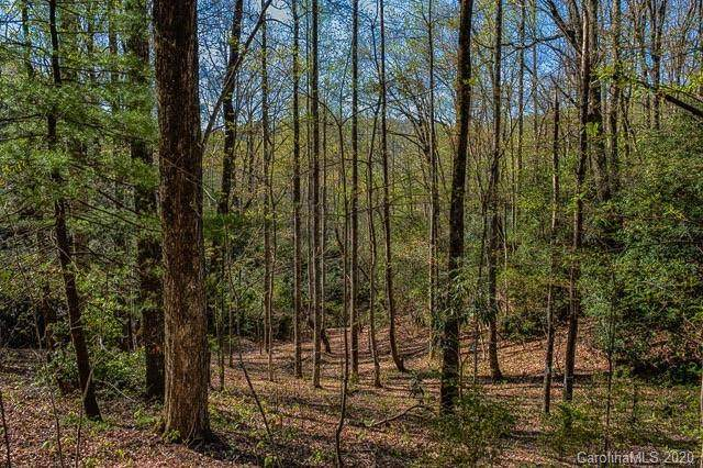 9 Ladys Fern Trail #9, Hendersonville, NC 28739 (#3600571) :: LePage Johnson Realty Group, LLC