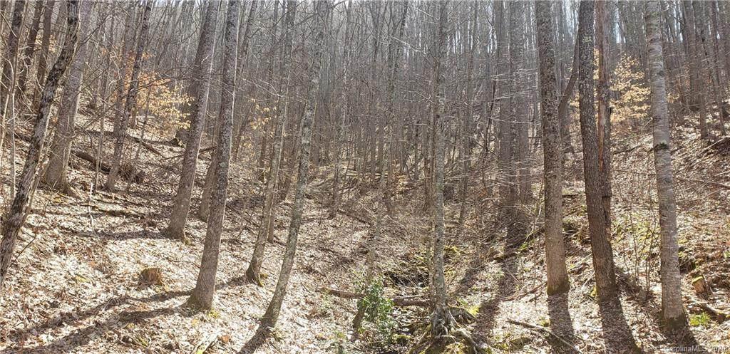 927 Waccamaw Trail - Photo 1