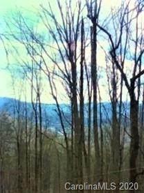 Cane Creek Estate Wildwood Drive Lt 5, Cullowhee, NC 28723 (#3602297) :: MartinGroup Properties