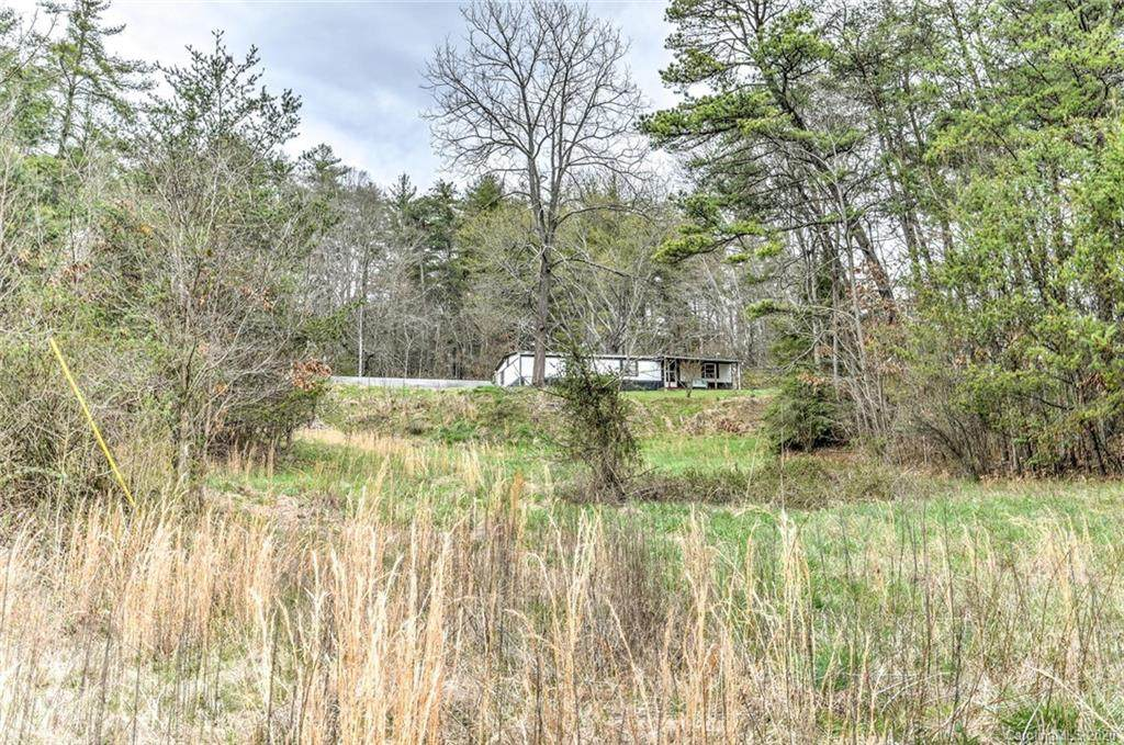 92 Old Mars Hill Highway - Photo 1