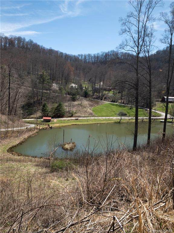 13 Rugged Top Road, Waynesville, NC 28785 (#3607466) :: Caulder Realty and Land Co.