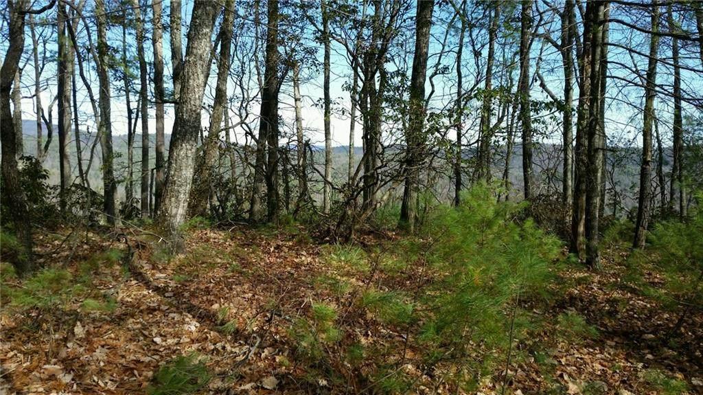 TBD Summit Ridge Road - Photo 1