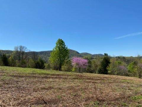2274 Seminole Way, Lenoir, NC 28645 (#3609285) :: Rowena Patton's All-Star Powerhouse