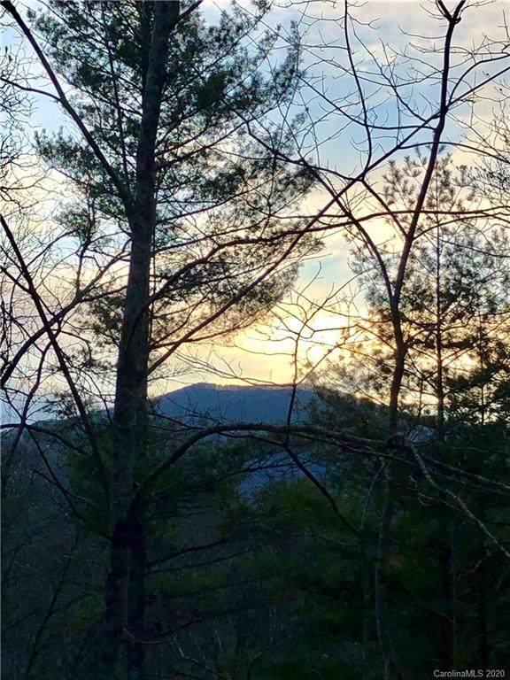 5557 Nc 209 Highway, Hot Springs, NC 28743 (#3614479) :: Carolina Real Estate Experts