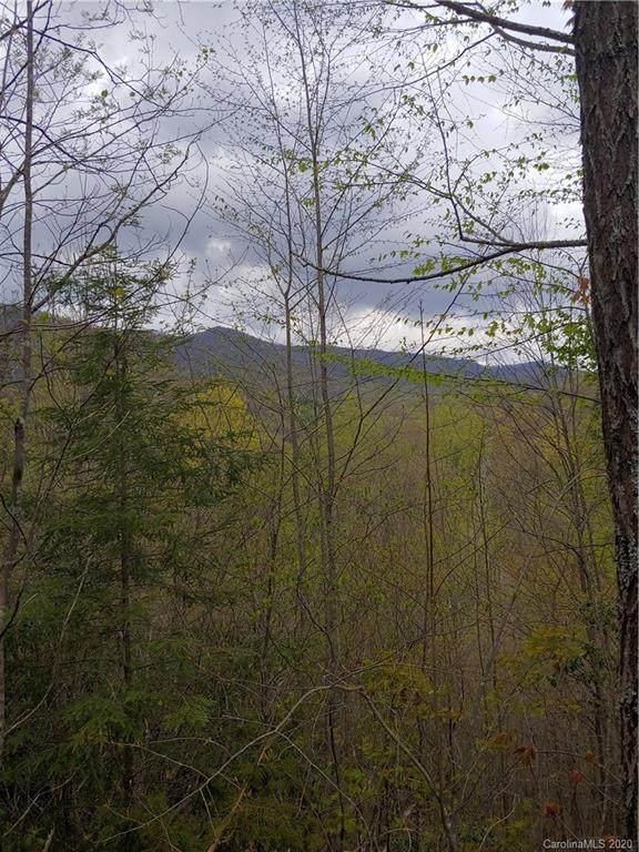 Lt 11 Booshway Mountain Road - Photo 1