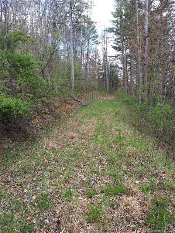 Lot 18 Trout Lily Trail - Photo 1
