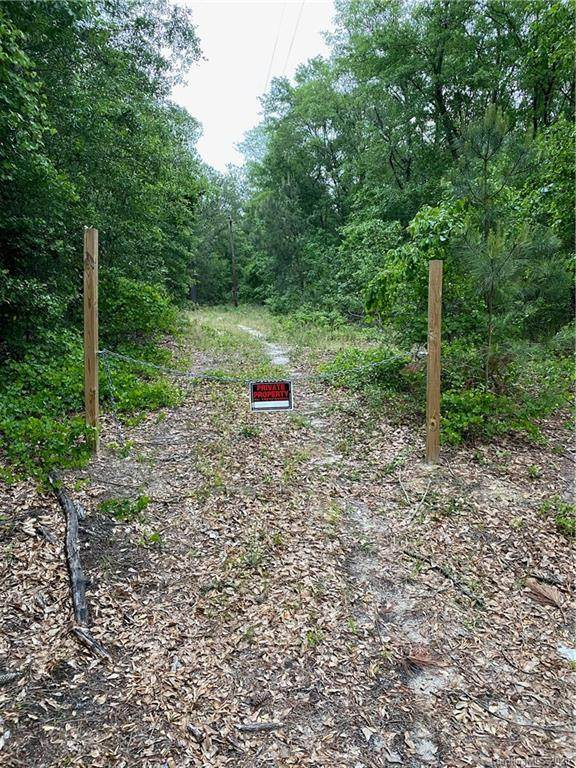 tbd Cheraw Road, Hamlet, NC 28345 (#3618662) :: LePage Johnson Realty Group, LLC