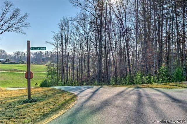 18 Grizzly Drive #67, Leicester, NC 28748 (#3623958) :: Besecker Homes Team