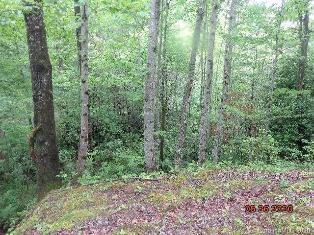 N/A S Ivy Ridge Circle, Sylva, NC 28779 (#3624615) :: Willow Oak, REALTORS®