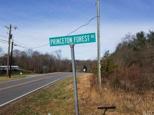 0000 Princeton Forest Drive - Photo 1