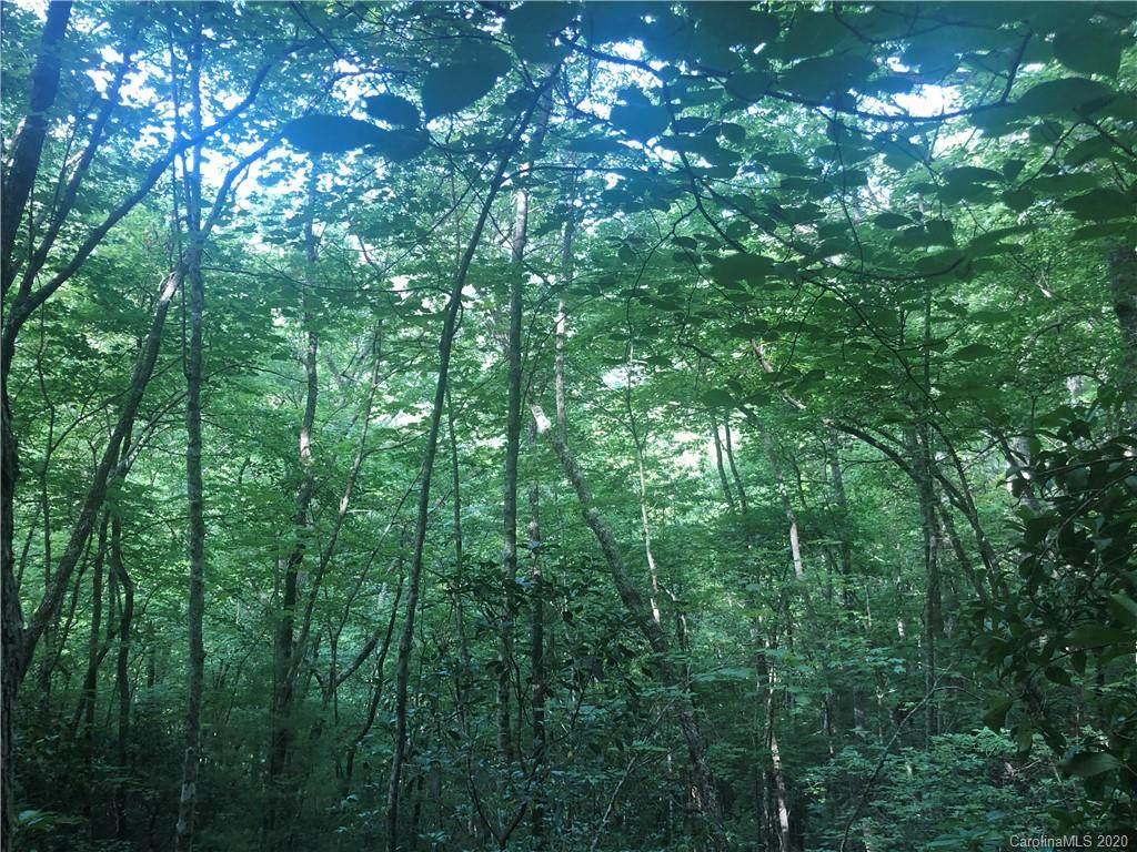 0 Canopy Lane - Photo 1