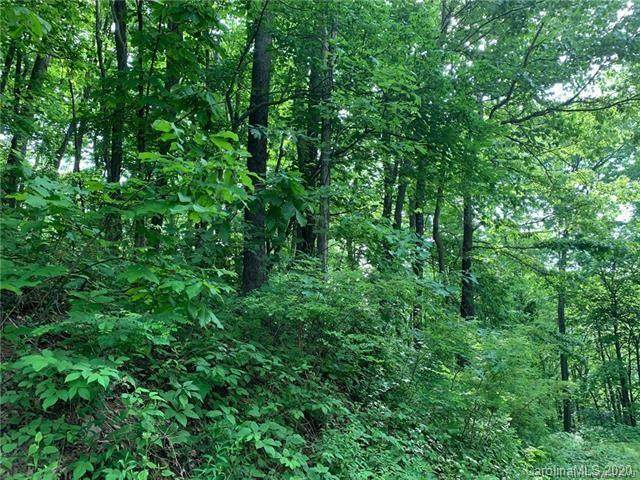 44 Dorchester Road, Waynesville, NC 28785 (#3636605) :: Mossy Oak Properties Land and Luxury