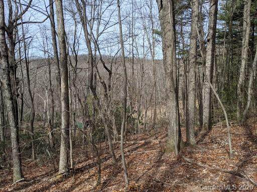 00 Ocean View Drive B, Saluda, NC 28773 (#3637572) :: LePage Johnson Realty Group, LLC