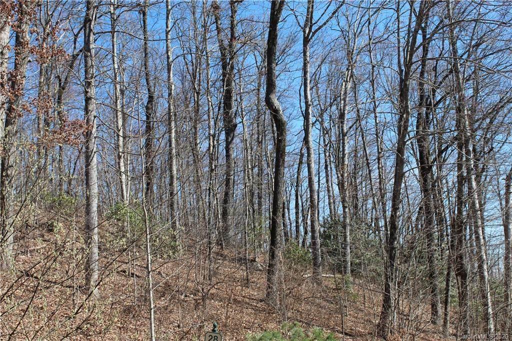 242 Black Bear Ridge Trail - Photo 1