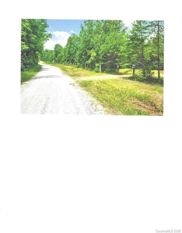 26.25 Acres Wilson Chapel Road - Photo 1