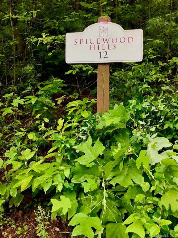 94 Spicewood Road #12, Weaverville, NC 28787 (#3645661) :: LePage Johnson Realty Group, LLC
