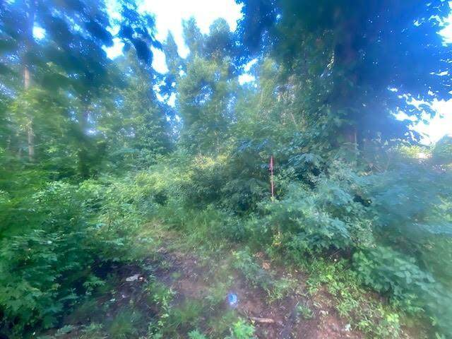 0 Oak Hill Road, Lenoir, NC 28645 (#3647285) :: Stephen Cooley Real Estate Group