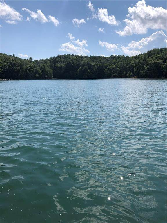Lot 14 Lake James Road #14, Nebo, NC 28761 (#3649380) :: Cloninger Properties