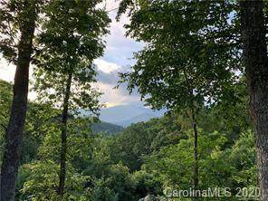 3 Crockett Ridge Road #178, Black Mountain, NC 28711 (#3650220) :: Stephen Cooley Real Estate Group