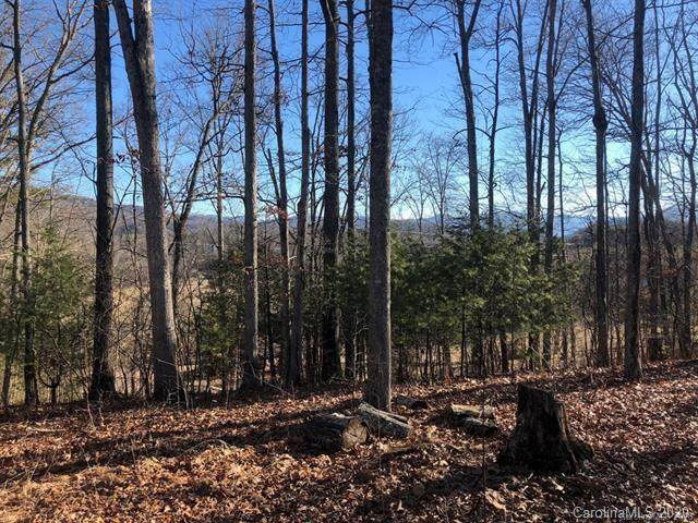 00 Blueberry Hill Drive #10, Clyde, NC 28721 (#3655627) :: Rinehart Realty