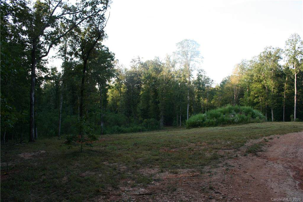 68 Acres Old Settlers Road - Photo 1