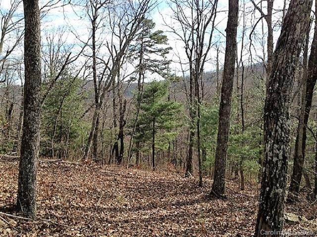 59 Overlook Drive #59, Flat Rock, NC 28731 (#3658575) :: Premier Realty NC