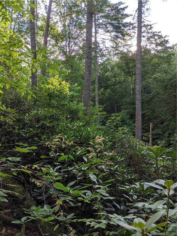 Lot 17 Rock Creek Trail Road #17, Brevard, NC 28712 (#3659407) :: Love Real Estate NC/SC