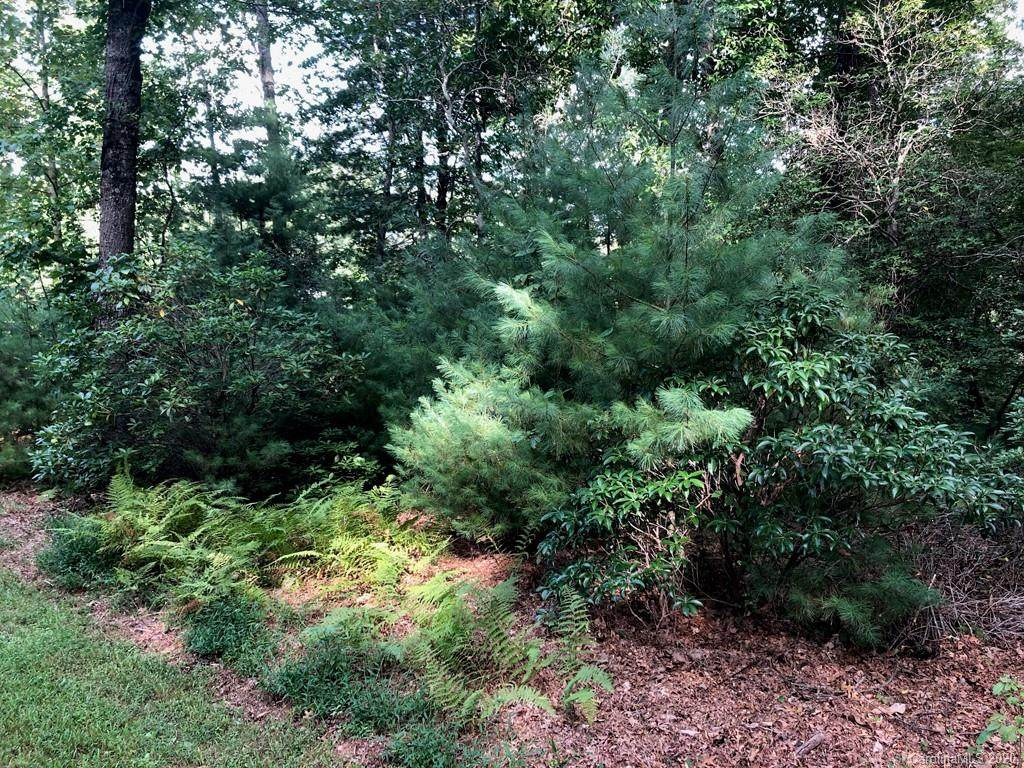 80 Powder Creek Trail - Photo 1