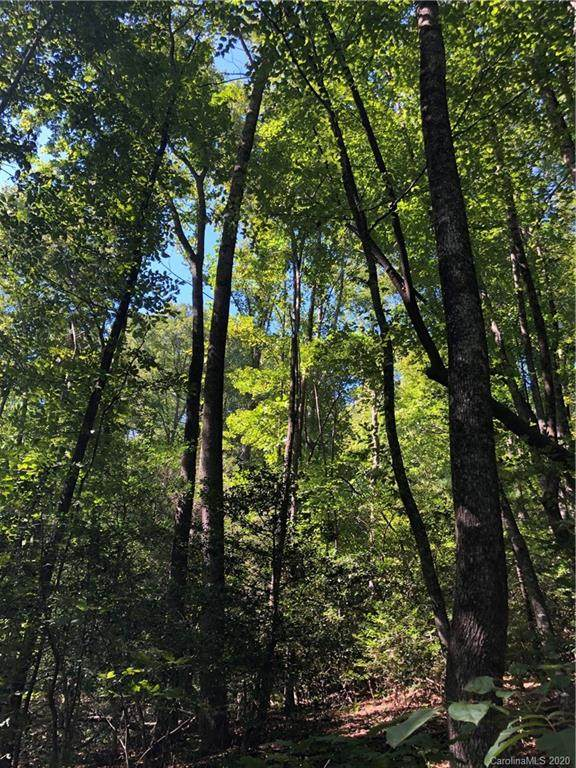 1.60 AC OF LOT 79 Haven Drive, Saluda, NC 28773 (#3665724) :: The Mitchell Team