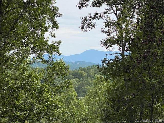 0000 Merrills Ridge Road #5, Asheville, NC 28803 (#3667666) :: The Ordan Reider Group at Allen Tate