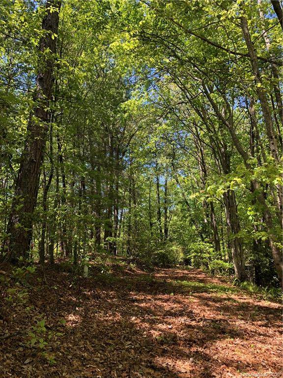 54 Old Little Mountain Road, Pisgah Forest, NC 28768 (#3669015) :: MartinGroup Properties