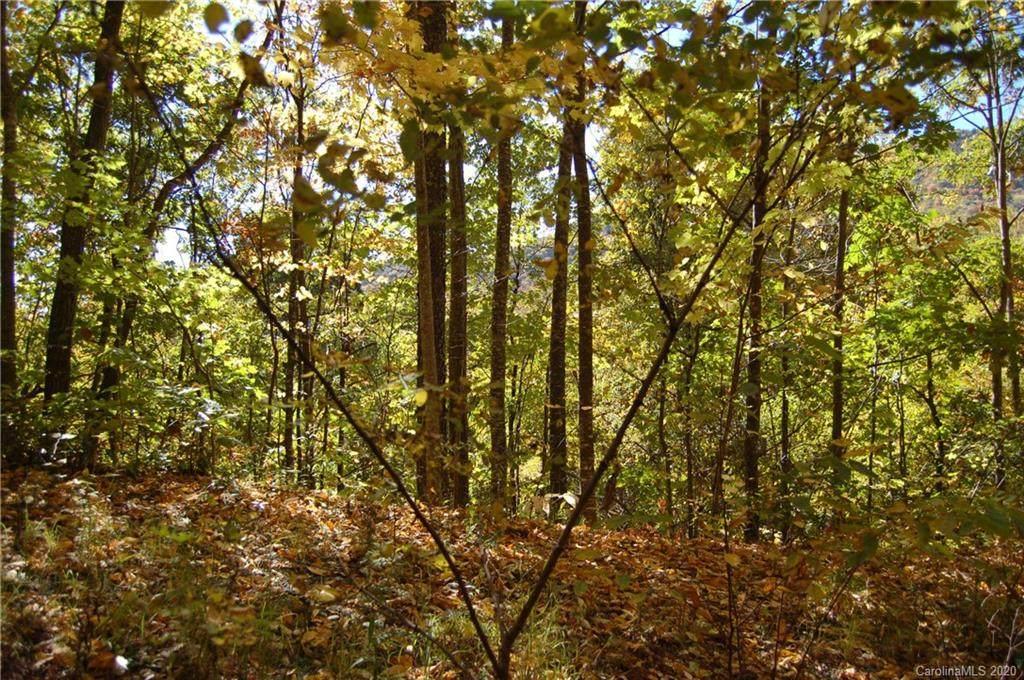 298 Winding Creek Drive - Photo 1