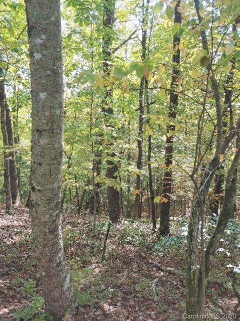 TBD Connestee Trail U09/L046, Brevard, NC 28712 (#3675932) :: Love Real Estate NC/SC