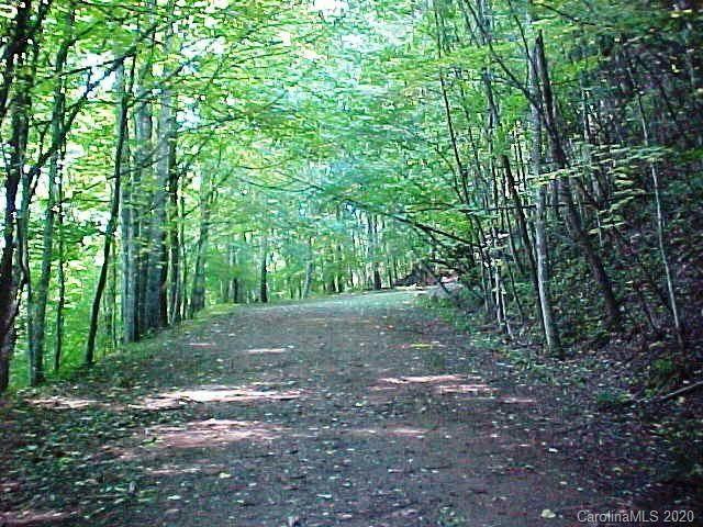 000 Lotties Creek Road, Burnsville, NC 28714 (#3676588) :: Rhonda Wood Realty Group