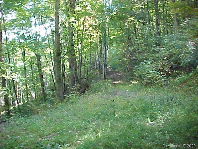 00 Lotties Creek Road, Burnsville, NC 28714 (#3676801) :: LePage Johnson Realty Group, LLC